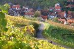 Duits wijndorp in de herfst