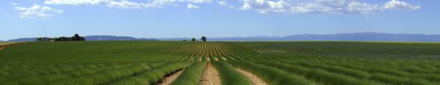 Franse platteland