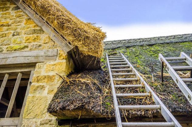 Repareren rieten dak