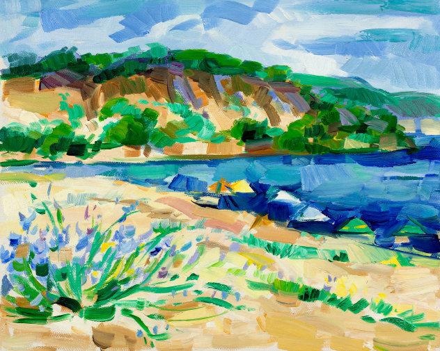 schilderij  franse kust