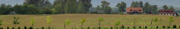 hongaarse platteland