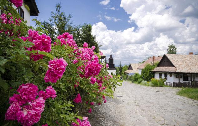 Hongaars dorp