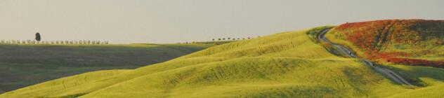 Landschap in de regio San Quirico D'orcia, Pienza, Toscane