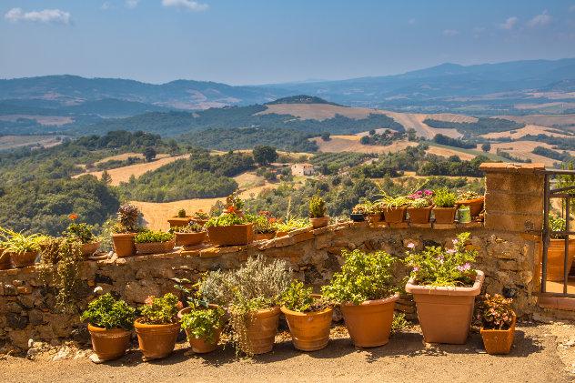 Toscane landschap met bloemen