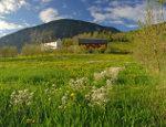 Huizen in het Noorse landschap
