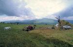 Bauern in der rumänischen Landschaft