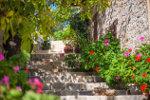 Trap met bloemen Spanje