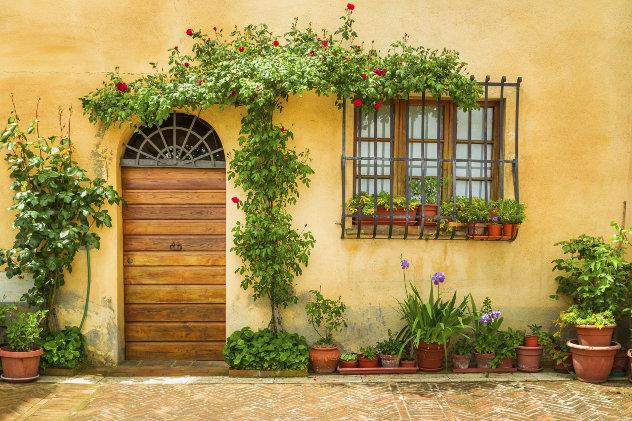 Bloemen op terras voor huis